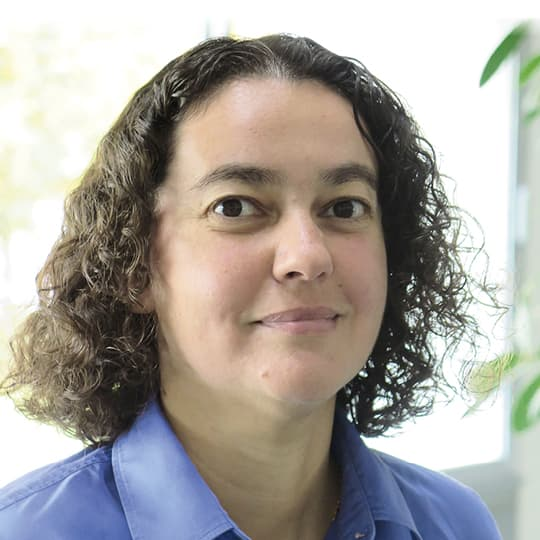 Anne-Sylvie Andre-Mayer, Professor in Economic Geology, Université de Lorraine, France