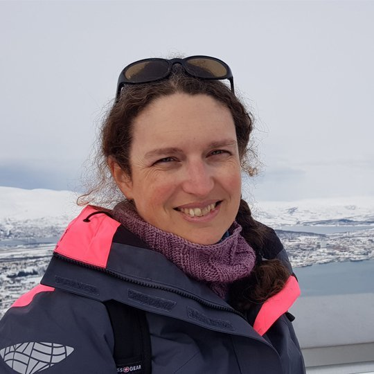 Nolwenn Coint, PhD, Geologist, Geological Survey of Norway